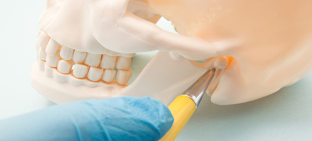 How Your Chiropractor Can Help with TMJ Disorders